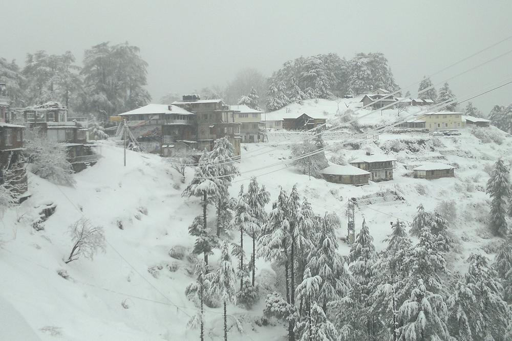 Day 03 : Shimla – Kufri – Shimla